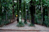 Mutirão no Bosque